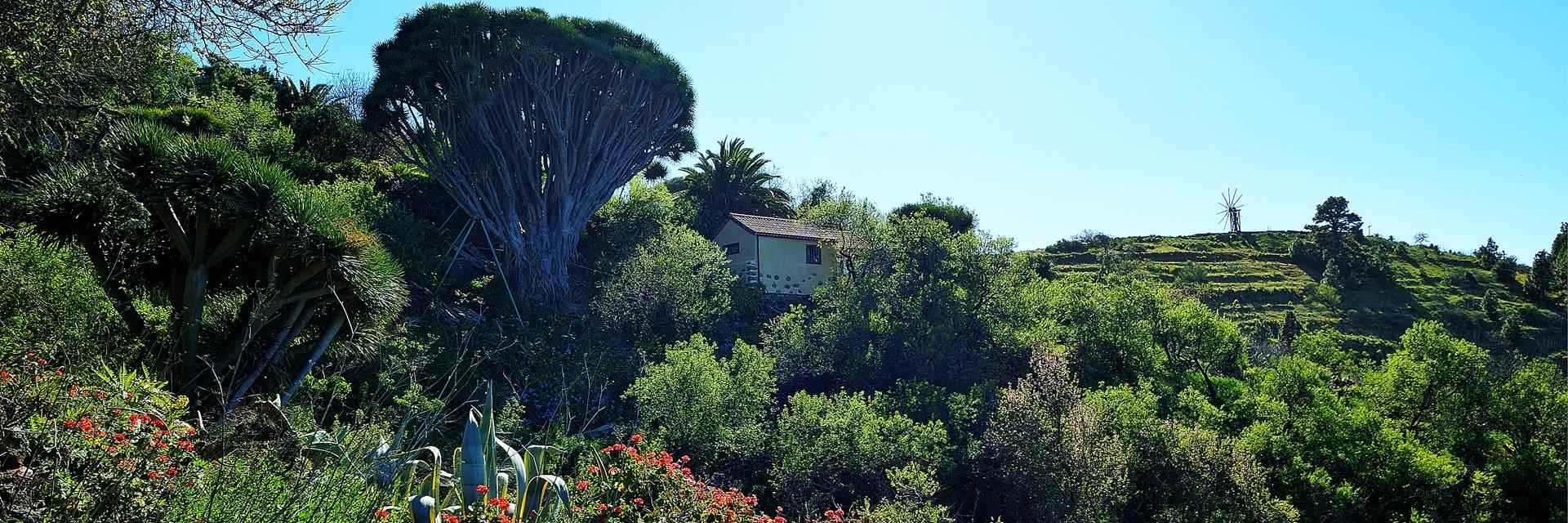 Kosten koper voor een huis op la palma canarische eilanden - Geavanceerd zoeken ...
