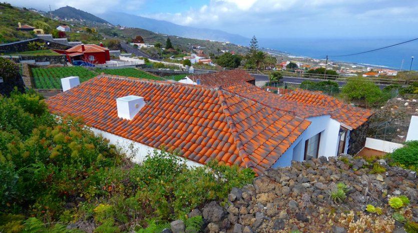 Mazo La Palma