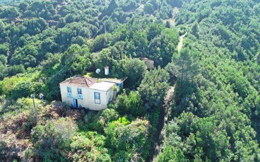 Franceses Casa Vida Verde La Palma Garafia